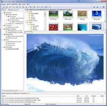 Extreme Picture Finder - Batch Image-Downloader und Web Picture-Finder in einem Produkt